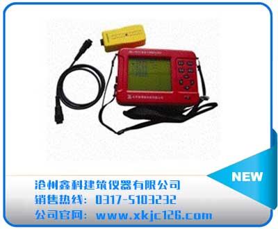 ZBL-R610混凝土钢筋检测仪